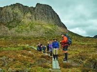 Pausing for interpretation from our guide on the Overland Track |  <i>Ashton Sayer</i>