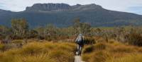 Walking on the Overland Track | Linda Murden