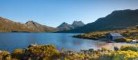 Looking towards Cradle Mountain from Lake Dove | Andrew McIntosh