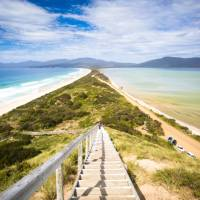 """Walk the long, narrow sandy isthmus known as """"The Neck"""".   Andrew Wilson"""