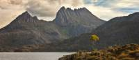 The amazing Cradle Mountain and Lake St Clair   Peter Walton