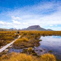 Trekkers walking along the boardwalk on the Overland Track | Great Walks of Australia