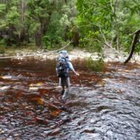Tackling a river crossing on Tasmania's South Coast Track | Michel Gueneau