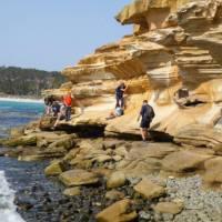Explore the beautiful Painted Cliffs on Tasmania's Maria Island   Toni Wythes