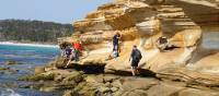 Explore the beautiful Painted Cliffs on Tasmania's Maria Island | Toni Wythes