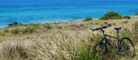 Bike resting - somewhere on the east coast of Tasmania | Leanne Atwal