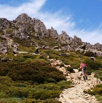 Heading to the summit of Cradle Mountain |  <i>Gesine Cheung</i>