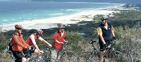 Cycling Tasmania's stunning East Coast | Island Cycle