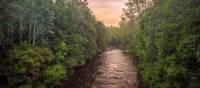 The pristine wilderness of the Franklin River | Glenn Walker