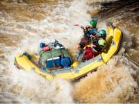 Guides rafting wilder waters on the Franklin River |  <i>Glenn Walker</i>