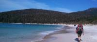 Walking on Wineglass Bay | Lilly Donkers