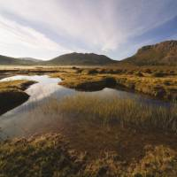 Morning light, Lake Salome | Peter Walton