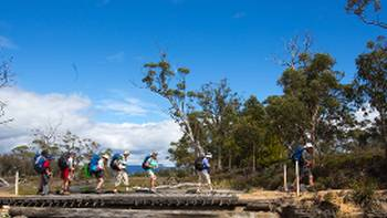 Explore the stunning Maria Island on this guided walk | Tourism Tasmania and Rob Burnett