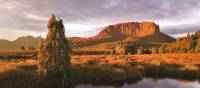 Mount Pellion West, Overland Track | Peter Walton