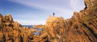 The Tarkine coast of Tasmania's west | Peter Walton