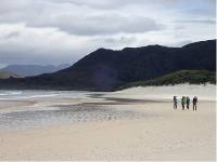 Spectacular beaches abound along the South Coast Track |  <i>Will Barker</i>
