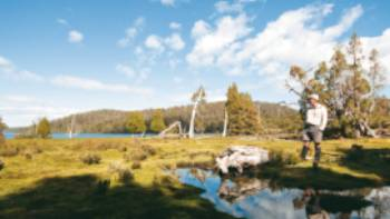Our Cradle Mountain & Walls of Jerusalem trip offers walkers some of Tasmania's most spectacular alpine scenery | Aran Price