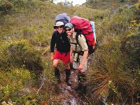 Trekkers enjoying the South Coast track |  <i>Gary Hayes</i>