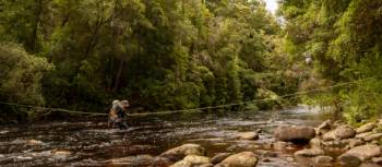 River crossing on the South Coast Track | John Dalton