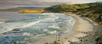 Explore the of tranquil coves and sandy beaches of Cockle Creek | Tourism Tasmania & Geoffrey Lea