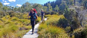 The Overland Track offers well maintained boardwalks to protect the fragile environment | Chris Buykx